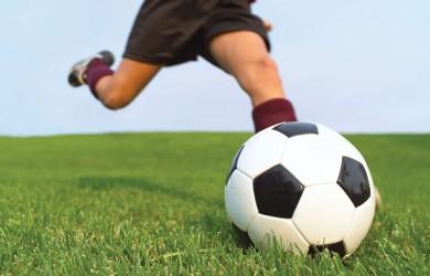 orchard park soccer club news